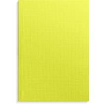 Anteckningsbok Burde grön linnetextil linjerad A4