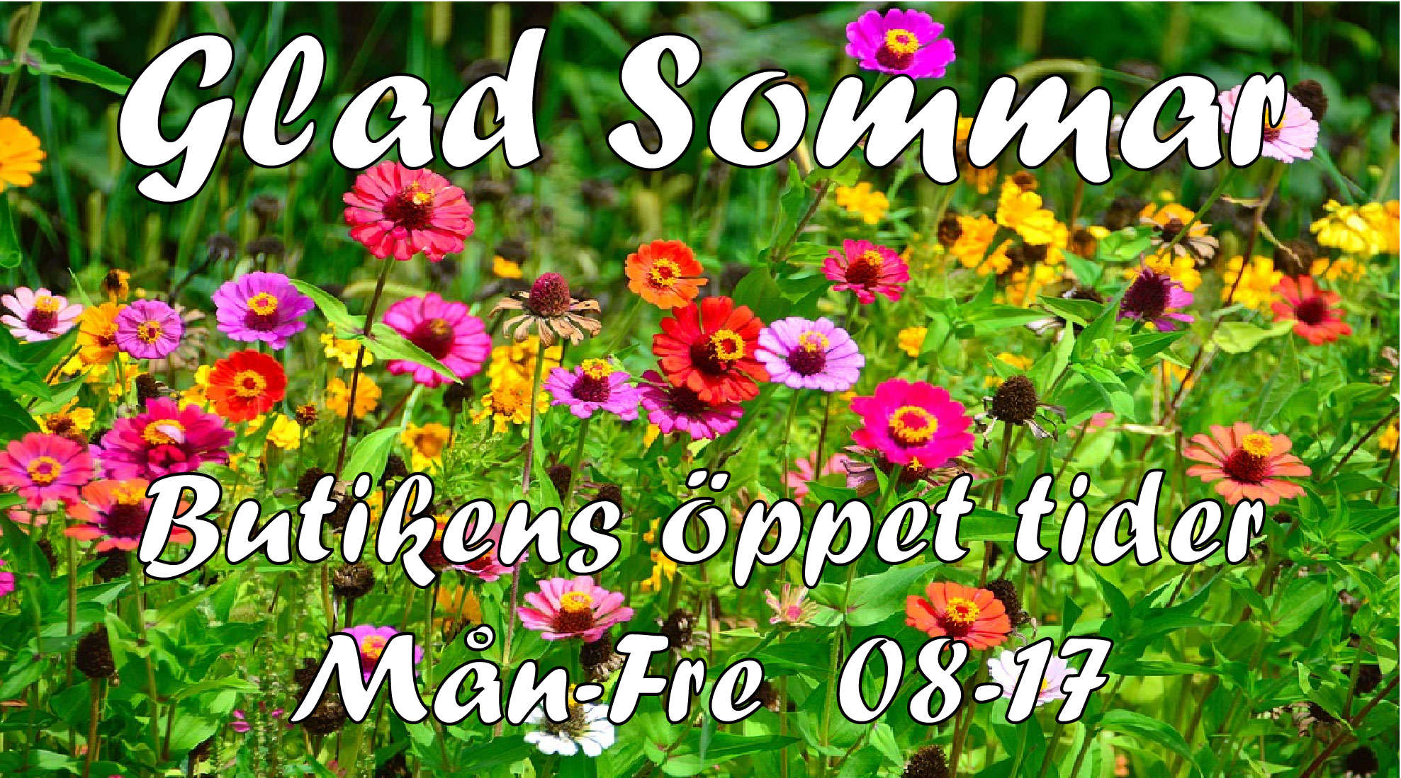Campaign banner local only Glad Sommar